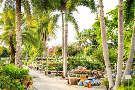 living color garden center fort lauderdale fl plants