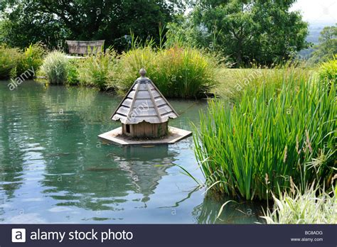 buy duck house floating duck house on the lake of a landscaped english garden in stock photo royalty