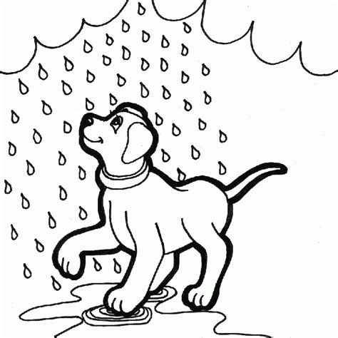 lluvia para colorear pintar im genes dibujos para colorear de mascotas dibujos de mascotas