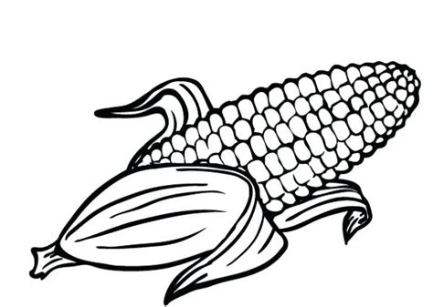 coloring page ear of corn coloring pages corn ear of corn coloring page ear coloring