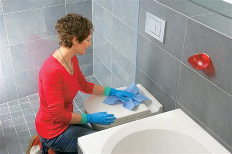 wash the bathroom toilet cleaning tips help me clean