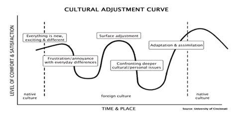 the learning curve creating a cultural framework to dismantle the school to prison pipeline books learning curve wandering writes