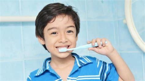 Sikat Gigi Bayi Keaide Biddy biasakan gosok gigi pada anak sejak dini portal resmi
