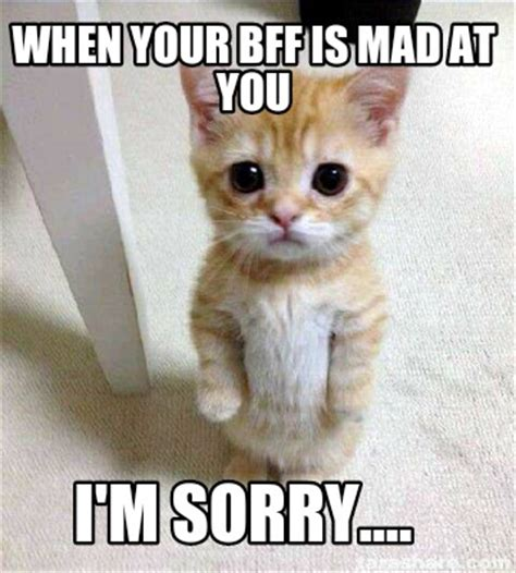 Im Mad At You Meme - meme creator when your bff is mad at you i m sorry