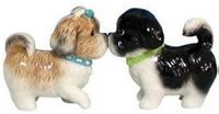 shih tzu salt and pepper shih tzu gifts shih tzu dogs