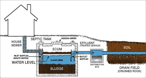 diagram of a septic tank system septic system diagram dougies septic