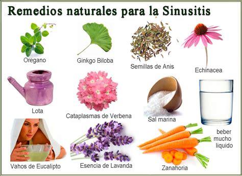 remedios caseros y naturales para la sinusitis mis remedios naturales para tratar la sinusitis la sinusitis