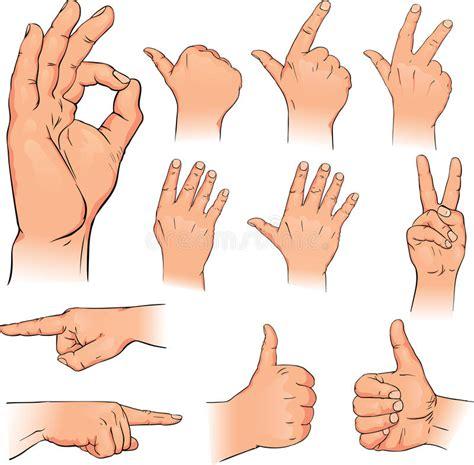 imagenes de varias manos varias actitudes de manos humanas im 225 genes de archivo