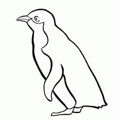 what color are penguins penguin coloring pages