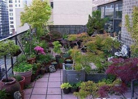 coltivazione a terrazza coltivare sul balcone piante da terrazzo piante da balcone