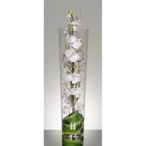 vase cylindrique d orchid 233 es blanches 99 33