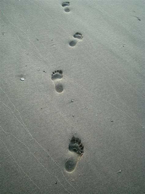Footprints In The Sand Picture