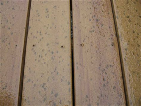 composite decking  wood decks  fences  ryan