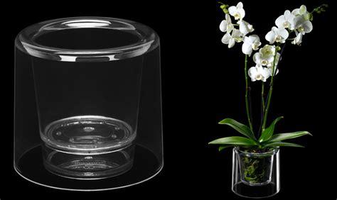 vasi per orchidee come curare le orchidee tutti i segreti giardango