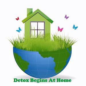 Detox Your House by Family Green Our Journey Detoxing Our Home And Lives