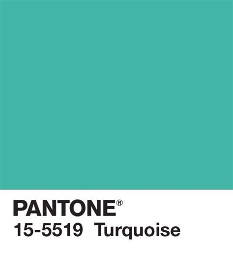 pantone unveils color of the year for 2010 pantone 15 5519 311 best images about pantone on pinterest pantone
