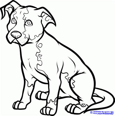 coloring pages of hunting dogs hunting dog coloring pages