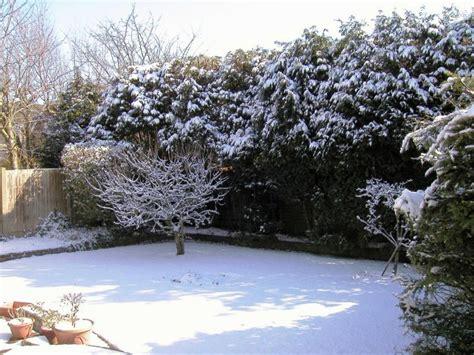jardn de invierno spanish qu 233 plantar en un jard 237 n de invierno rolloid