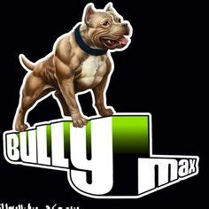 p max supplement bully max building supplements for dogs bully