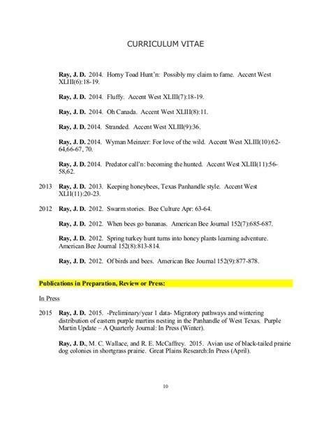 Curriculum Vitae With Accent Curriculum Vitae