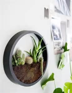 20 cool terrarium ideas that are simply amazing