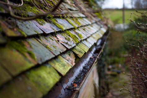 kupfer gegen moos kupfer auf dem dach 187 so sch 252 tzen sie es vor moos