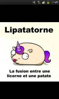 Badass Home Decor patate licorne lipatatorne 3 potatoe unicorn