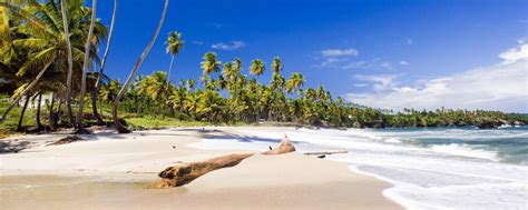 And Tobago Search Travel To And Tobago Discover And