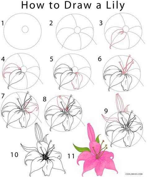 how to draw a photos step by step to draw flower drawing gallery