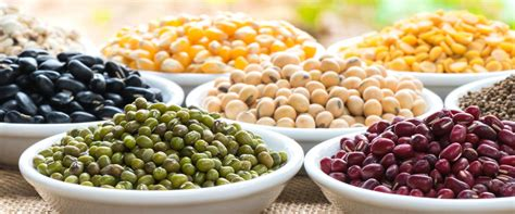 whole grains and legumes the 2010 to 2015 dietary guidelines spoken