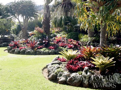 subtropical garden ideas gardening south florida style bromeliads in the garden