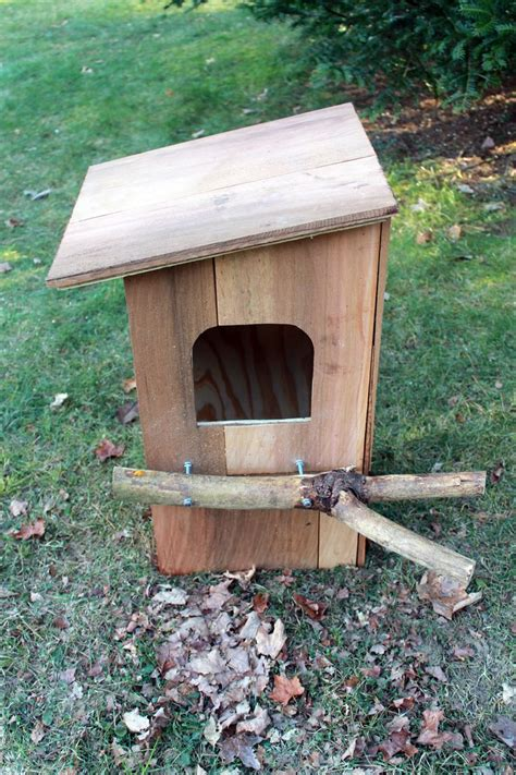 best 25 owl box ideas on pinterest owl house owl nest