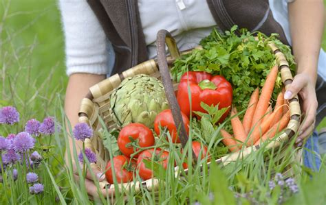 Vegetable Gardening Food Background We Heart It Simple How To Start A Vegetable Garden For Dummies