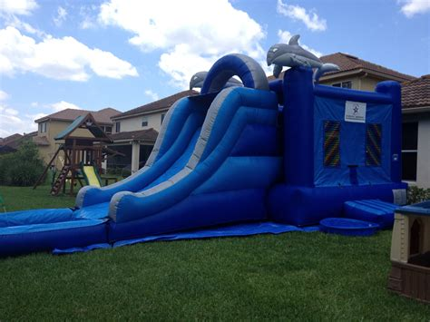 bounce house with slide dolphin bounce house slide combo fun n jump bounce rent