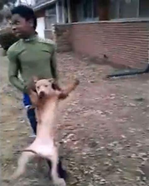 Perros Cojiendo Mujeres Stupidvideos | video de perros cojiendo con mujeres