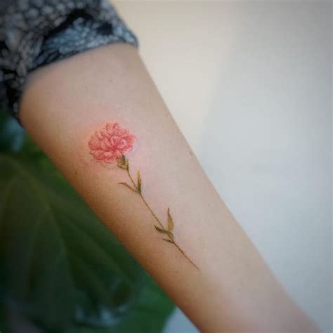 carnations tattoo best 25 carnation ideas on carnation