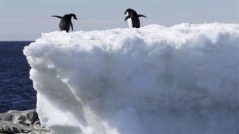 Cause Of Records Photo Challenged Reuters Fails To Explain True Cause Of Record Antarctic Temperature