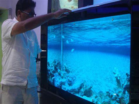 aquarium design chennai india aquarium