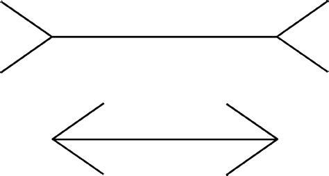 ilusiones opticas usos 191 puede un portero hacer uso de ilusiones 243 pticas para