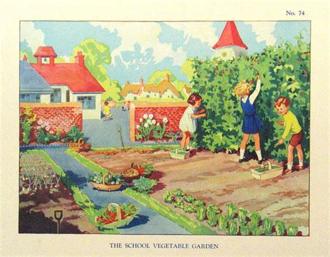 vegetable garden clip two years in the infant school box 4 topics 64 84 by