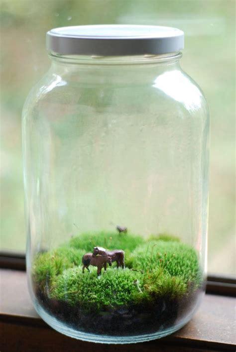 25 best ideas about mason jar terrarium on pinterest succulents in mason jars diy jar crafts