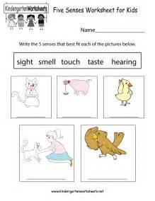 five senses worksheet for kids free kindergarten