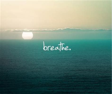 Breathe It All In take time to breathe quotes quotesgram