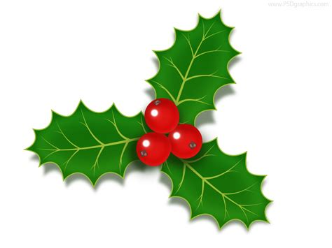 christmas holly berries icon psd psdgraphics