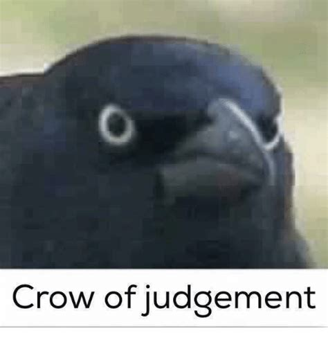 crow of judgement crow meme on me me
