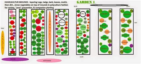 Planting Vegetable Garden Layout Vegans Living The Land Layout Of 2015 Summer Fall Garden Using Polyculture Pest