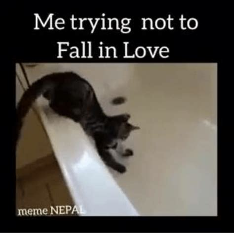 In Love Memes - 25 best memes about falling in love memes falling in