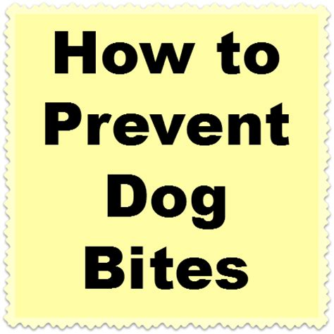 how to get your puppy to stop biting how to get dogs to in a certain area how to prevent a from biting you