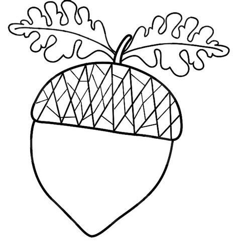 acorn coloring page auromas com