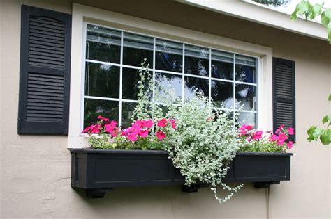 window flower box fuschia flower box window box contest